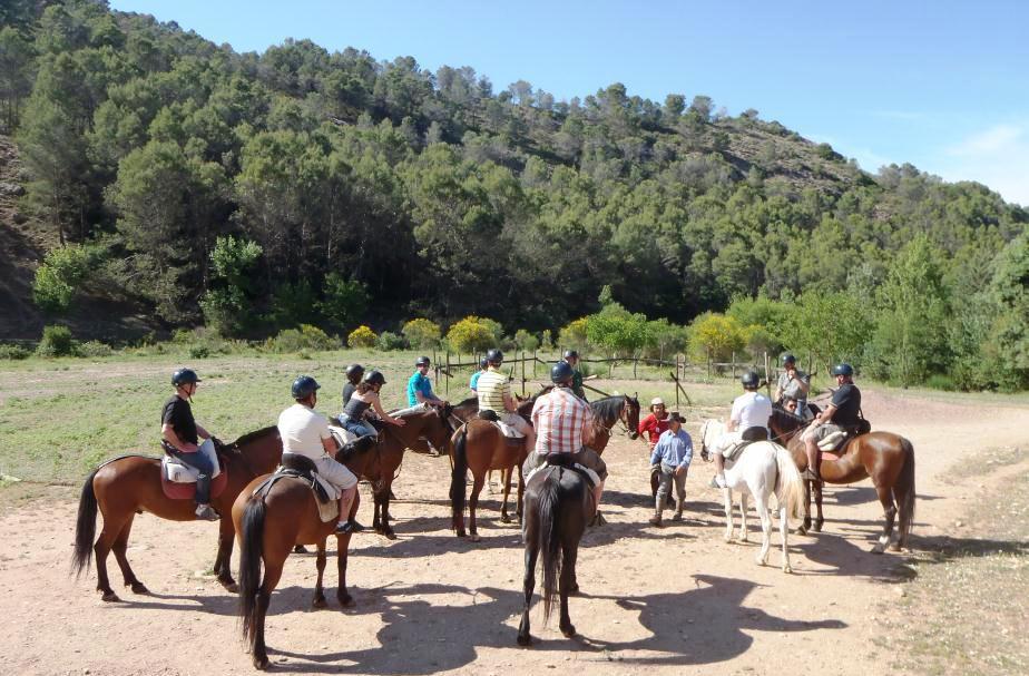horse riding costa del sol