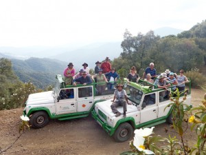 4×4 Experience Natural Andalusia 1/2 day