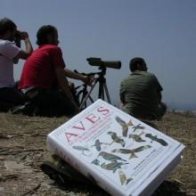 BirdWatching Costa del Sol