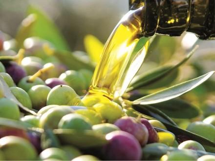 olive oil tasting costa del sol