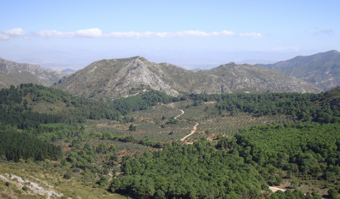 juanar marbella mountain