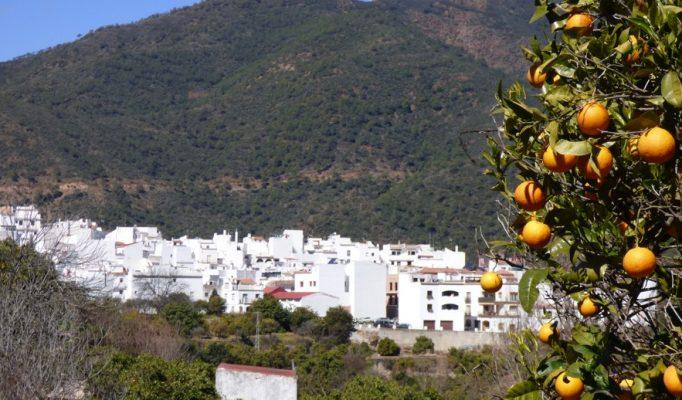 Costa del Sol Village